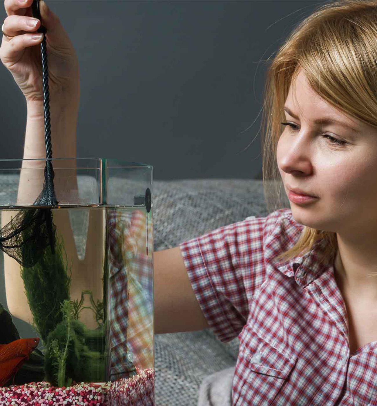 FISH-FRIEND---Manutenzione-acquario